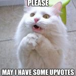 I did this just to annoy people | PLEASE MAY I HAVE SOME UPVOTES | image tagged in begging cat | made w/ Imgflip meme maker