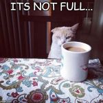 Cat Doesn't Like this Coffee | ITS NOT FULL... | image tagged in cat doesn't like this coffee | made w/ Imgflip meme maker