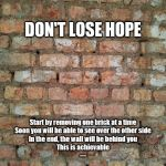 Brick wall | DON'T LOSE HOPE Start by removing one brick at a time Soon you will be able to see over the other side In the end, the wall will be behind y | image tagged in brick wall | made w/ Imgflip meme maker