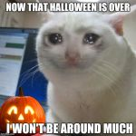 GOT ALOT OF WORK TO DO | NOW THAT HALLOWEEN IS OVER I WON'T BE AROUND MUCH | image tagged in crying cat | made w/ Imgflip meme maker