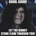 Sidious Error Meme | GOOD, GOOD! LET THE KIDNEY STONE FLOW THROUGH YOU! | image tagged in memes,sidious error | made w/ Imgflip meme maker