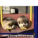 SWING SWONG YOU ARE WRONG meme