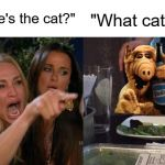 "Woman Yelling At Cat Meme | ""Where's the cat?"" ""What cat?"" 
