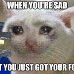 Sad cat | WHEN YOU'RE SAD BUT YOU JUST GOT YOUR FOOD | image tagged in sad cat | made w/ Imgflip meme maker