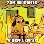Dog in burning house | 2 SECONDS AFTER YOU SEE A SPIDER | image tagged in dog in burning house | made w/ Imgflip meme maker