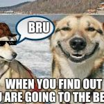 Original Stoner Dog Meme | WHEN YOU FIND OUT YOU ARE GOING TO THE BEACH BRU | image tagged in memes,original stoner dog | made w/ Imgflip meme maker