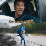 Sonic I have no idea meme