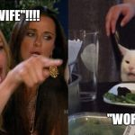 "Woman yelling at cat | ""IT'S WIFE""!!!! ""WOR LASS"" 