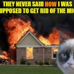 Be more specific next time | THEY NEVER SAID HOW I WAS SUPPOSED TO GET RID OF THE MICE HOW | image tagged in memes,burn kitty,grumpy cat | made w/ Imgflip meme maker