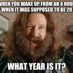 What Year Is It Meme | WHEN YOU WAKE UP FROM AN 4 HOUR NAP WHEN IT WAS SUPPOSED TO BE 20 MIN WHAT YEAR IS IT? | image tagged in memes,what year is it | made w/ Imgflip meme maker
