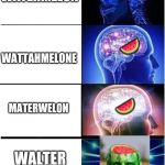 Expanding Brain Meme | WATERMELON WATTAHMELONE MATERWELON WALTER MALONE ? ? ? | image tagged in memes,expanding brain | made w/ Imgflip meme maker