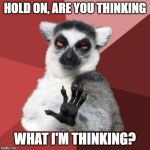 Chill Out Lemur Meme | HOLD ON, ARE YOU THINKING WHAT I'M THINKING? | image tagged in memes,chill out lemur | made w/ Imgflip meme maker