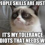 Grumpy cat | MY PEOPLE SKILLS ARE JUST FINE IT'S MY TOLERANCE TO IDIOTS THAT NEEDS WORK | image tagged in grumpy cat | made w/ Imgflip meme maker
