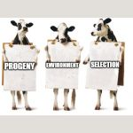 Chick-fil-A 3-cow billboard | PROGENY ENVIRONMENT SELECTION | image tagged in chick-fil-a 3-cow billboard | made w/ Imgflip meme maker