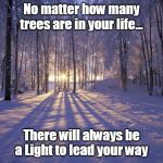 #StartLivingToday | No matter how many trees are in your life... There will always be a Light to lead your way | made w/ Imgflip meme maker