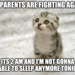 This is 3rd time this week. | MY PARENTS ARE FIGHTING AGAIN. ITS 2 AM AND I'M NOT GONNA BE ABLE TO SLEEP ANYMORE TONIGHT. | image tagged in memes,sad cat,parents fighting,no sleep | made w/ Imgflip meme maker