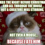 Grumpy Cat Christmas | 'TWAS THE NIGHT BEFORE CHRISTMAS,  AND ALL THROUGH THE HOUSE  NOT A CREATURE WAS STIRRING, NOT EVEN A MOUSE... BECAUSE I ATE HIM | image tagged in grumpy cat christmas | made w/ Imgflip meme maker