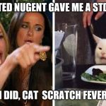 Smudge the cat | TED NUGENT GAVE ME A STD I DID, CAT  SCRATCH FEVER | image tagged in smudge the cat | made w/ Imgflip meme maker