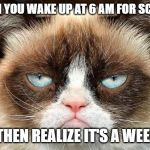 Grumpy Cat Not Amused Meme | WHEN YOU WAKE UP AT 6 AM FOR SCHOOL AND THEN REALIZE IT'S A WEEKEND | image tagged in memes,grumpy cat not amused,grumpy cat | made w/ Imgflip meme maker