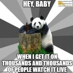 sexy panda | HEY, BABY WHEN I GET IT ON THOUSANDS AND THOUSANDS OF PEOPLE WATCH IT LIVE | image tagged in memes,pickup line panda | made w/ Imgflip meme maker