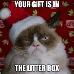 Grumpy Cat Christmas | YOUR GIFT IS IN THE LITTER BOX | image tagged in grumpy cat christmas | made w/ Imgflip meme maker