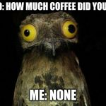 Weird Stuff I Do Potoo Meme | FRIEND: HOW MUCH COFFEE DID YOU HAVE ME: NONE | image tagged in memes,weird stuff i do potoo | made w/ Imgflip meme maker