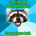 Lame Pun Coon Meme | I got invited to a rabbit party. It was a hare ball. | image tagged in memes,lame pun coon | made w/ Imgflip meme maker