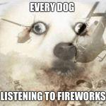 PTSD dog Meme Generator - Imgflip