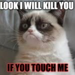 Grumpy cat | LOOK I WILL KILL YOU IF YOU TOUCH ME | image tagged in grumpy cat | made w/ Imgflip meme maker