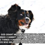 Crazy Dawg Meme | GOD GRANT ME THE STRENGTH TO ACCEPT THE THINGS I CANNOT CHANGE, THE COURAGE TO CHANGE THE THINGS I CAN, AND WONDERFUL AND DEVOTED FRIENDS WH | image tagged in memes,crazy dawg | made w/ Imgflip meme maker