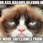 Grumpy Cat Not Amused Meme | IS YOUR ASS JEALOUS OF YOUR MOUTH 'CAUSE MORE SHIT COMES FROM THEM | image tagged in memes,grumpy cat not amused,grumpy cat | made w/ Imgflip meme maker