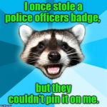 Lame Pun Coon Meme | I once stole a police officers badge, but they couldn't pin it on me. | image tagged in memes,lame pun coon | made w/ Imgflip meme maker