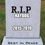 May he rest in memes | RAYDOG 2015-2019 | image tagged in rip headstone | made w/ Imgflip meme maker