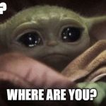 Crying Baby Yoda | Jillian? WHERE ARE YOU? | image tagged in crying baby yoda | made w/ Imgflip meme maker