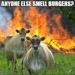 Evil Cows Meme | ANYONE ELSE SMELL BURGERS? | image tagged in memes,evil cows | made w/ Imgflip meme maker