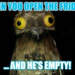 Every night!? | WHEN YOU OPEN THE FRIDGE... ... AND HE'S EMPTY! | image tagged in memes,weird stuff i do potoo,fridge,hungry,man,human | made w/ Imgflip meme maker