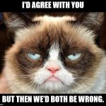 Grumpy Cat Not Amused Meme | I'D AGREE WITH YOU BUT THEN WE'D BOTH BE WRONG. | image tagged in memes,grumpy cat not amused,grumpy cat,insults | made w/ Imgflip meme maker