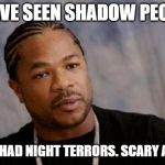 Serious Xzibit Meme | I HAVE SEEN SHADOW PEOPLE I HAVE HAD NIGHT TERRORS. SCARY AS HELL | image tagged in memes,serious xzibit | made w/ Imgflip meme maker