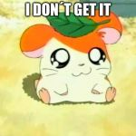 Hamtaro Meme | I DON´T GET IT | image tagged in memes,hamtaro | made w/ Imgflip meme maker
