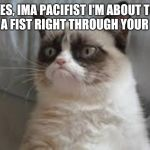 Grumpy cat | YES, IMA PACIFIST I'M ABOUT TO PASS A FIST RIGHT THROUGH YOUR FACE! | image tagged in grumpy cat | made w/ Imgflip meme maker