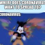 Yakko's World: Coronavirus Edition 2020 | WHERE DOES CORONAVIRUS WANT TO SPREAD TO? CORONAVIRUS: | image tagged in united states  canada | made w/ Imgflip meme maker