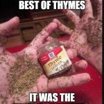 Thyme | IT WAS THE BEST OF THYMES IT WAS THE WORST OF THYMES. | image tagged in thyme | made w/ Imgflip meme maker