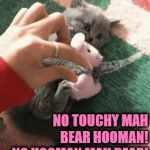 IT'S MINE | NO TOUCHY MAH BEAR HOOMAN! NO HOOMAN MAH BEAR! | image tagged in gifs,mine,kitten,cats,teddy bear | made w/ Imgflip video-to-gif maker