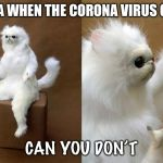 Persian Cat Room Guardian Meme | CHINA WHEN THE CORONA VIRUS CAME CAN YOU DON'T | image tagged in memes,persian cat room guardian | made w/ Imgflip meme maker