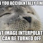 Satisfied Seal Meme | WHEN YOU ACCIDENTALLY FIND OUT THAT IMAGE INTERPOLATION CAN BE TURNED OFF | image tagged in memes,satisfied seal | made w/ Imgflip meme maker