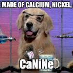 No wonder they seem a bit noble! | DOGS ARE MADE OF CALCIUM, NICKEL, AND NEON CaNiNe | image tagged in memes,chemistry dog,dogs,periodic table,elements,wordplay | made w/ Imgflip meme maker