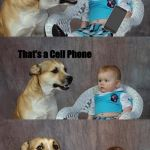 So I Threw it on the Ground? | It's dad Maaan, That's not dad, That's a Cell Phone | image tagged in memes,dad joke dog | made w/ Imgflip meme maker