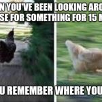 running chicken | WHEN YOU'VE BEEN LOOKING AROUND THE HOUSE FOR SOMETHING FOR 15 MINUTES AND YOU REMEMBER WHERE YOU PUT IT | image tagged in running chicken,chicken,running,lost,found,lost and found | made w/ Imgflip meme maker