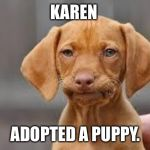 Disappointed Dog | KAREN ADOPTED A PUPPY. | image tagged in disappointed dog | made w/ Imgflip meme maker