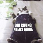 Fat Cat Meme | ME AFTER I WENT TO MIC DONALDS BIG CHUNG NEEDS MORE | image tagged in memes,fat cat | made w/ Imgflip meme maker
